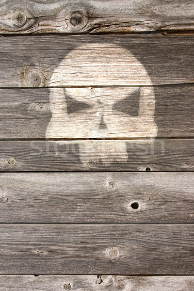 bone head on wooden background Stock photo © drizzd