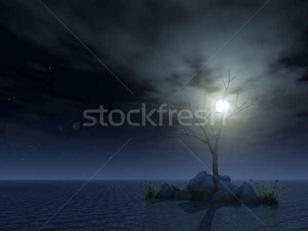 dead tree at night Stock photo © drizzd