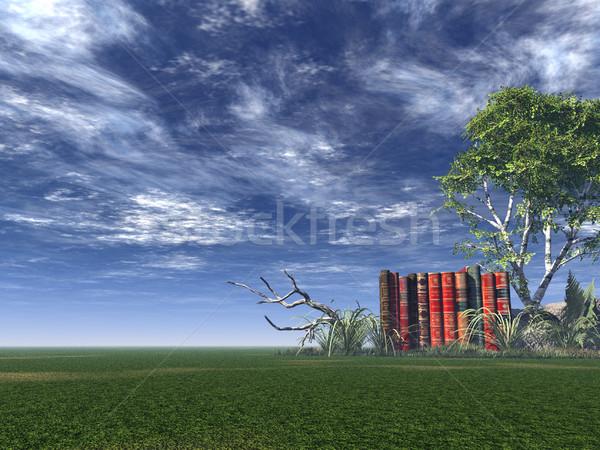 books Stock photo © drizzd