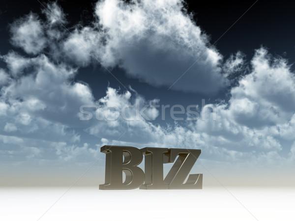 biz domain Stock photo © drizzd