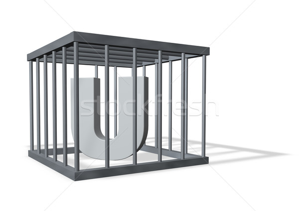 Nagy ketrec levél fehér 3d illusztráció biztonság Stock fotó © drizzd