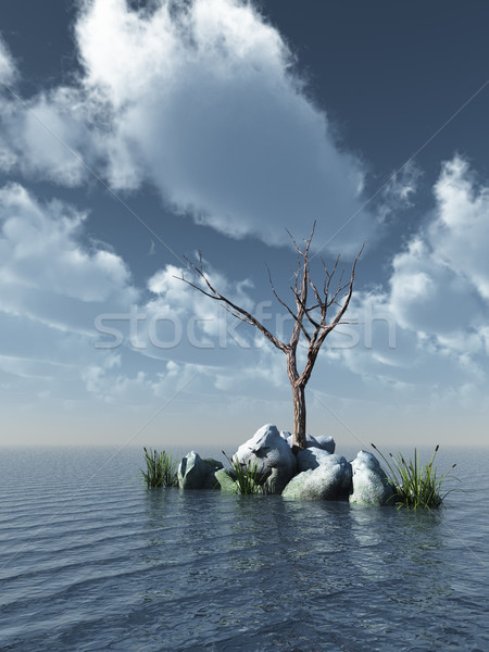 Toter Baum Ozean 3D-Darstellung Himmel Natur Meer Stock foto © drizzd