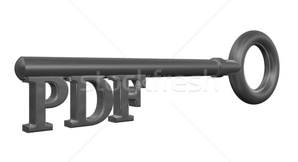 Pdf chave metal membro ilustração 3d computador Foto stock © drizzd