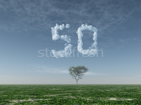 cloudy fifty Stock photo © drizzd