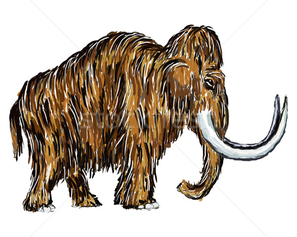 mammoth Stock photo © drizzd