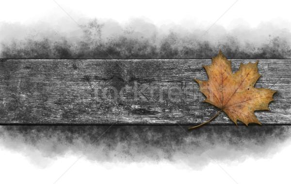カエデの葉 古い 木製 テクスチャ ツリー ストックフォト © drizzd