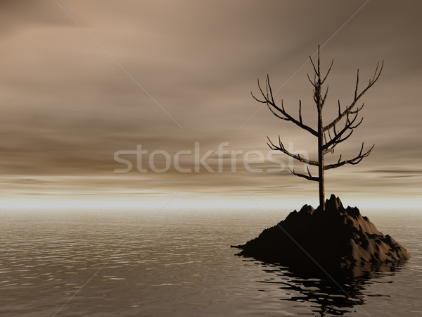lonely Stock photo © drizzd