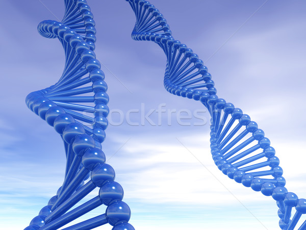 DNA strands Stock photo © drizzd