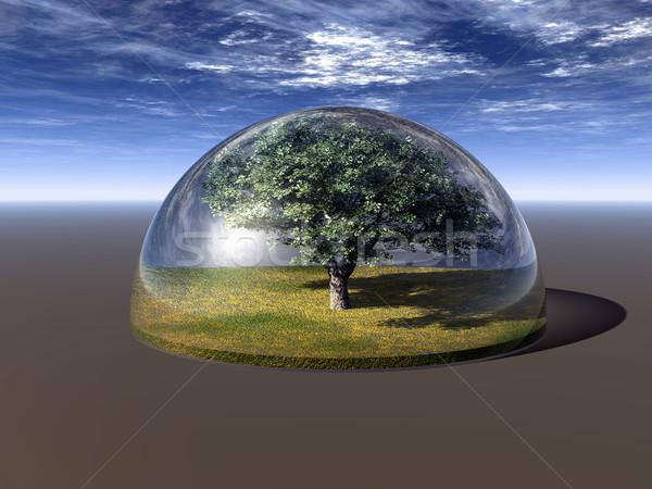 Ağaç cam kubbe 3d illustration gökyüzü yaprak Stok fotoğraf © drizzd