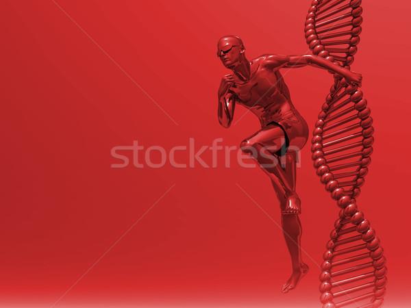 Dna corrida homem ilustração 3d médico Foto stock © drizzd