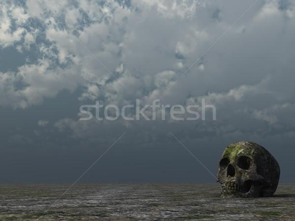 Rohadt koponya sivatag felhős égbolt 3d illusztráció Stock fotó © drizzd