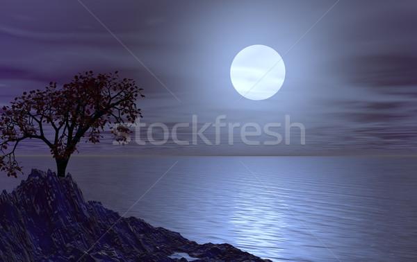 água paisagem árvore noite ilustração 3d nuvens Foto stock © drizzd