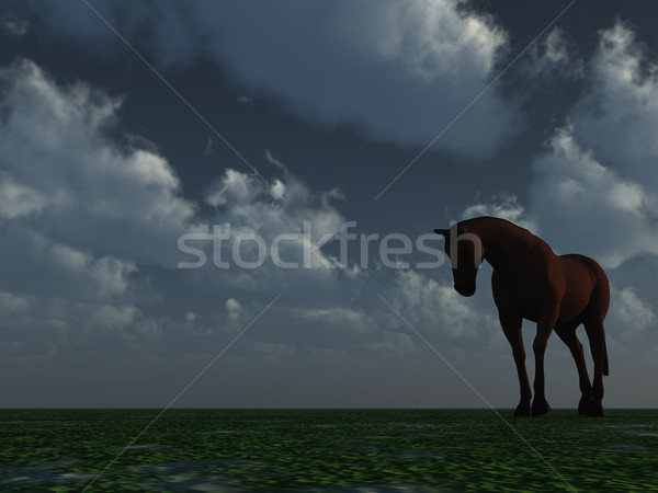 horse Stock photo © drizzd