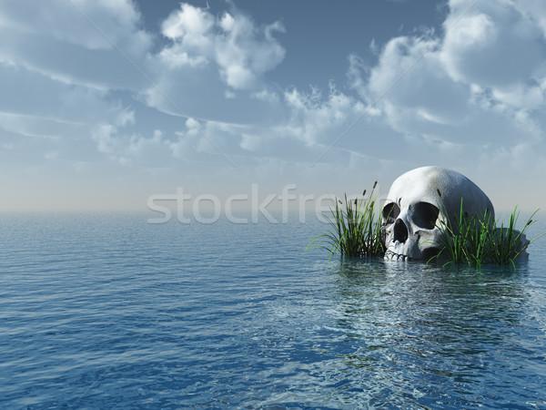 череп каменные океана 3d иллюстрации небе воды Сток-фото © drizzd