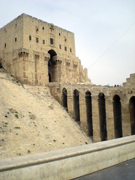 Citadel of Aleppo Stock photo © Dserra1