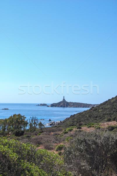 Италия природы пейзаж башни побережье Сток-фото © Dserra1