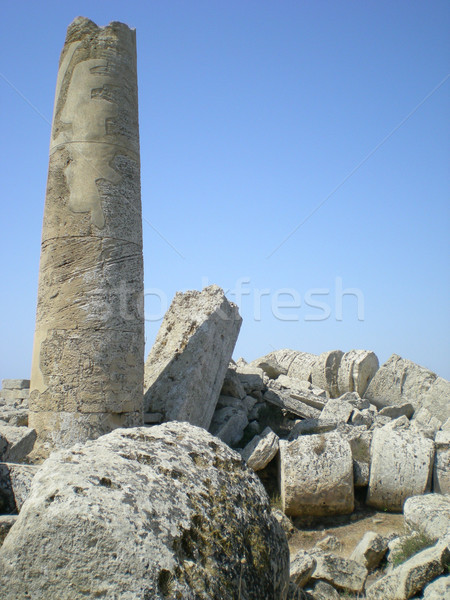 The antique ruins of Sicily in Selinunt Stock photo © Dserra1
