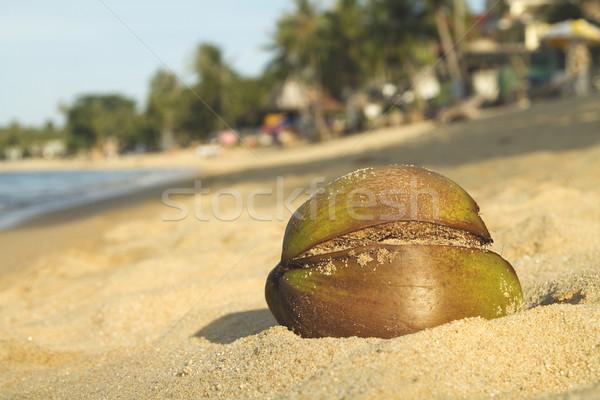 Kokosnoot strand tropisch strand Thailand palmbomen Stockfoto © duoduo