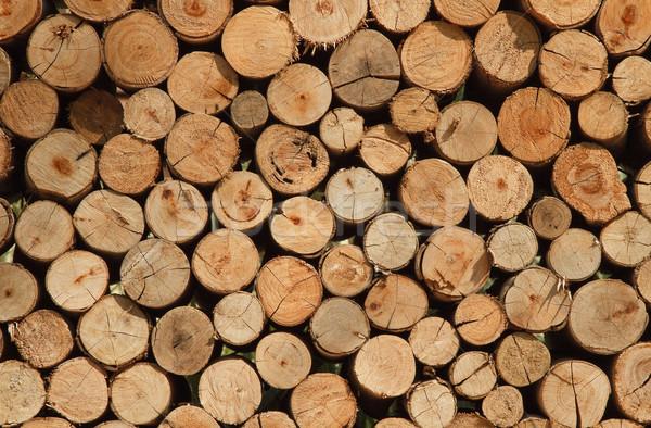 Kuru yakacak odun yukarı üst doku Stok fotoğraf © duoduo