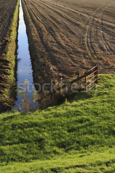 Najaar Nederland agrarisch scène water Stockfoto © duoduo