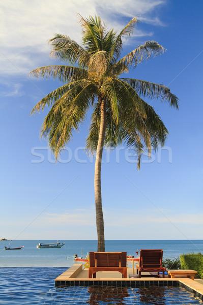 Yüzme havuzu deniz Tayland hurma ağacı su Stok fotoğraf © duoduo