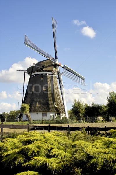 Fırıldak karşı güney hollanda su yeşil Stok fotoğraf © duoduo