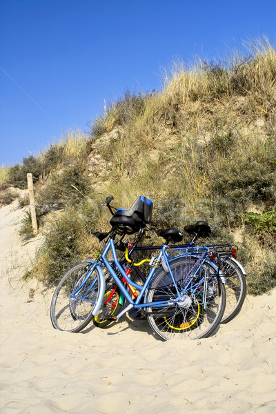 Three bicycles parked against sand dunes Stock photo © duoduo