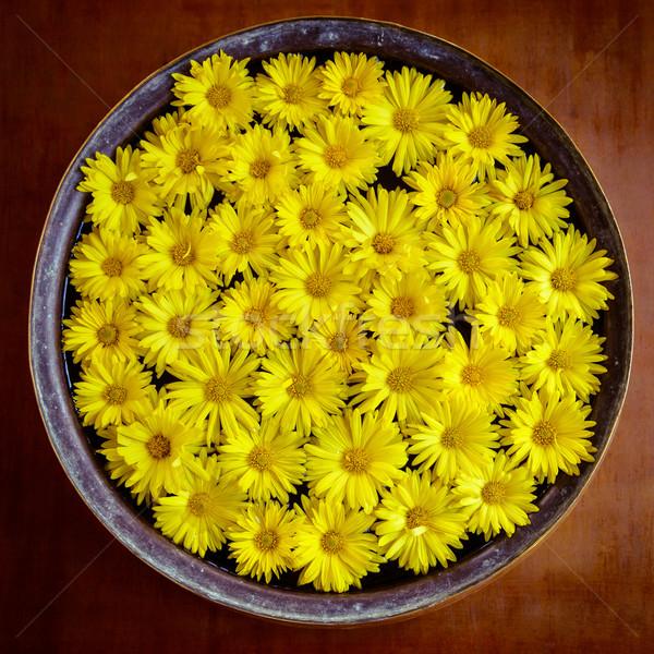 黄色の花 水 花 自然 ホーム ストックフォト © dutourdumonde