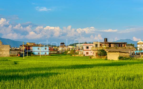 Непал риса полях домах гор Сток-фото © dutourdumonde