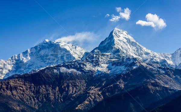 Balık kuyruk Nepal tepe kar dağ Stok fotoğraf © dutourdumonde