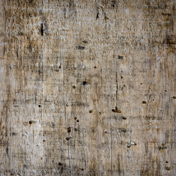 Old wooden plank close-up Stock photo © dutourdumonde