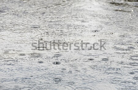дождь капли поверхности воды природы волна падение Сток-фото © dutourdumonde