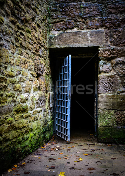 Opened prison door Stock photo © dutourdumonde