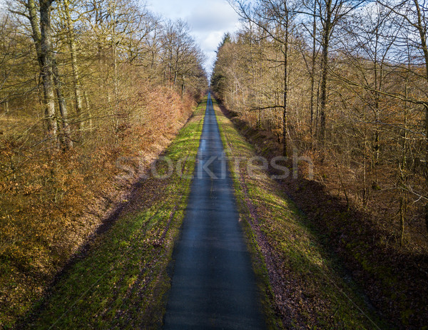 Stock photo: Aerial view of narrow road