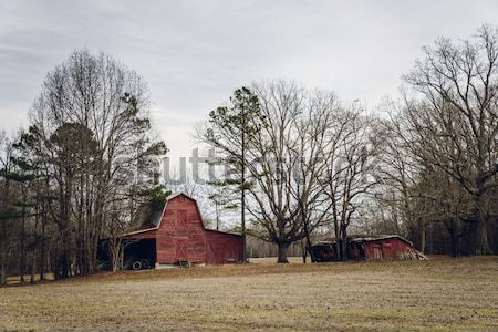 Eski amerikan gökyüzü çim kış kırmızı Stok fotoğraf © dutourdumonde