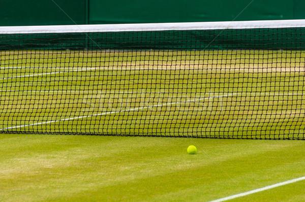 Gramado quadra de tênis bola de tênis esportes verão tênis Foto stock © dutourdumonde