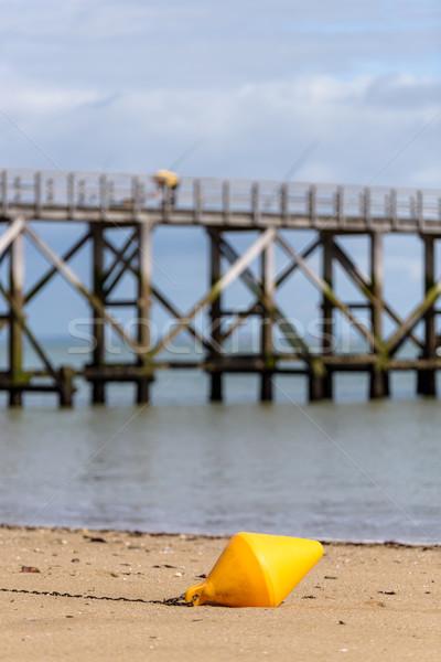 Foto d'archivio: Arancione · boa · spiaggia · sabbia · concetto · sereno