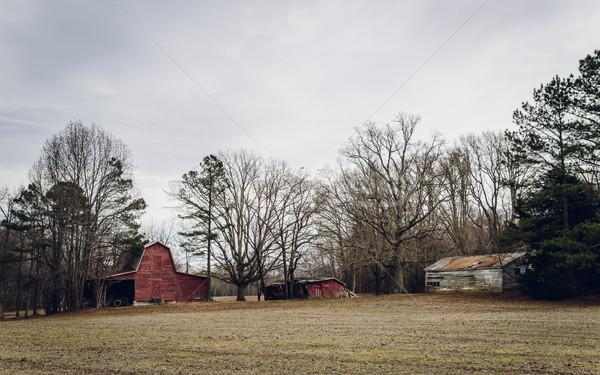 Oude amerikaanse hemel gras winter Rood Stockfoto © dutourdumonde