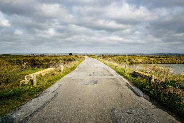 Road in rural Brittany, France Stock photo © dutourdumonde