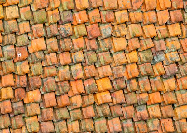 Old tile roof texture Stock photo © dutourdumonde