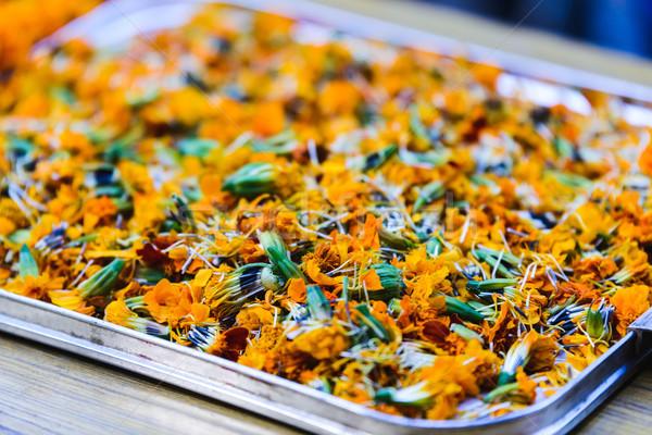 トレイ 祭り 花 自然 旅行 色 ストックフォト © dutourdumonde