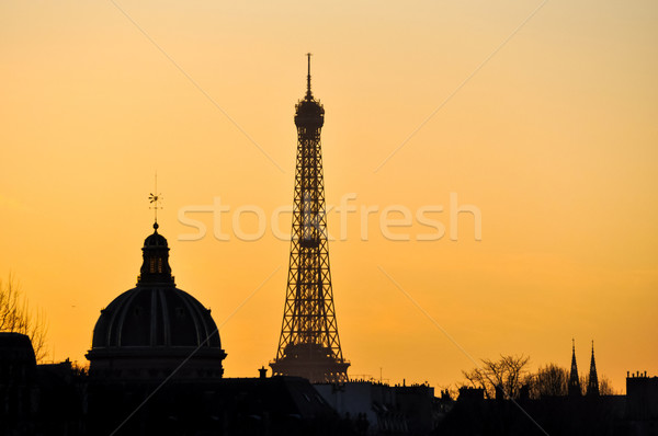 The Eiffel Tower and the French Institute at sunset Stock photo © dutourdumonde