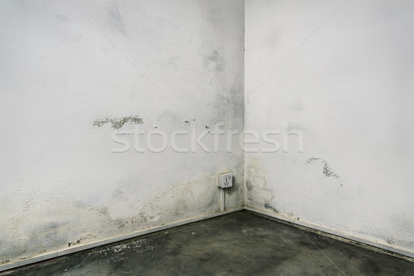 Grungy room corner Stock photo © dutourdumonde
