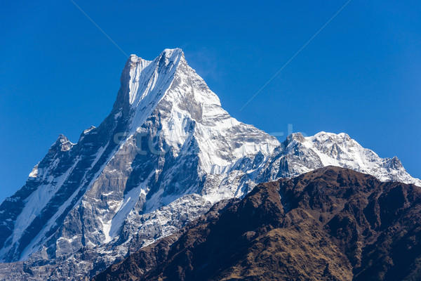 The Machapuchre in the Annapurna region Stock photo © dutourdumonde