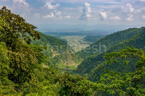 Vale Nepal ver árvore natureza Foto stock © dutourdumonde