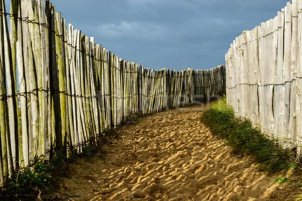 Kust zanderig parcours houten beide kant Stockfoto © dutourdumonde