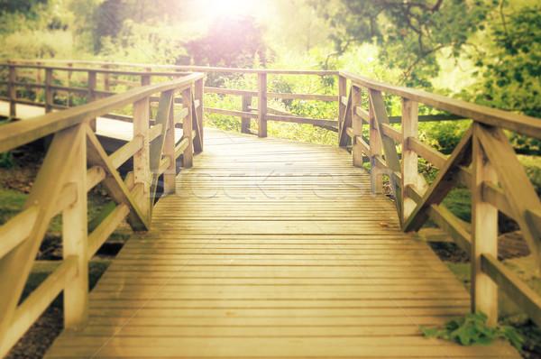 Passarela madeira natureza beleza verão Foto stock © dutourdumonde