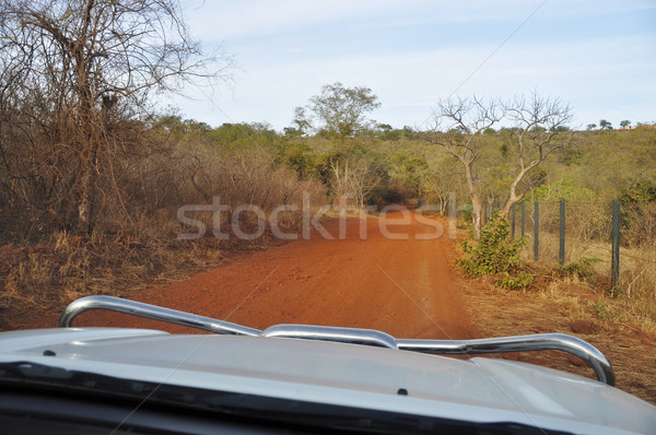 Driving a 4x4 in Africa Stock photo © dutourdumonde