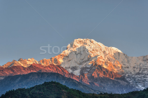 The Annapurna South in Nepal Stock photo © dutourdumonde
