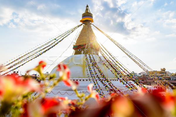 Bloem oog wereld reizen aanbidden goud Stockfoto © dutourdumonde